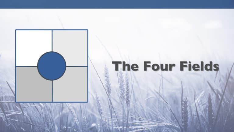 The Four Fields